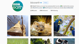 BBC Earth - Social Channels