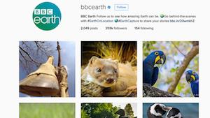 BBC Earth - Social Channels